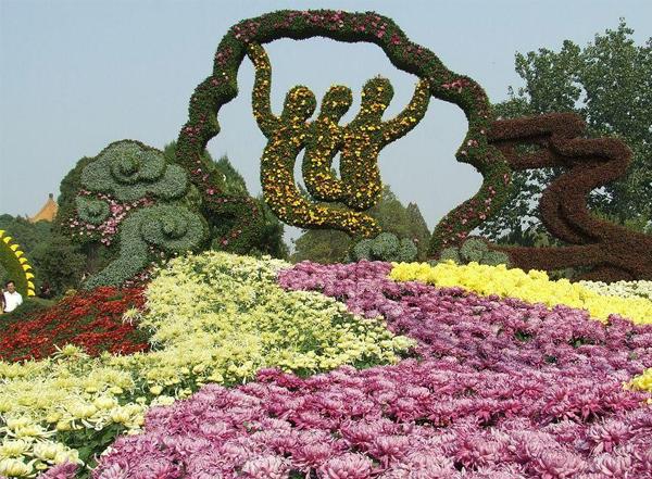 园林菊展五色草施工