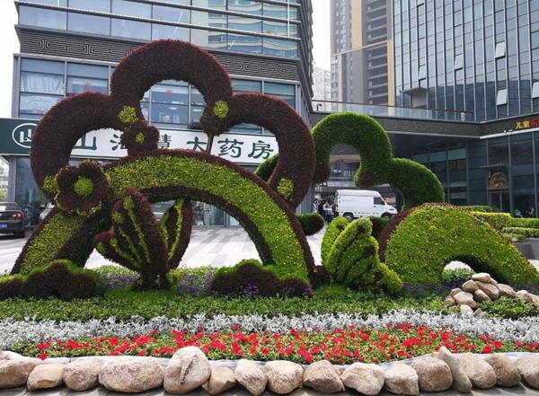 五色草立体花坛