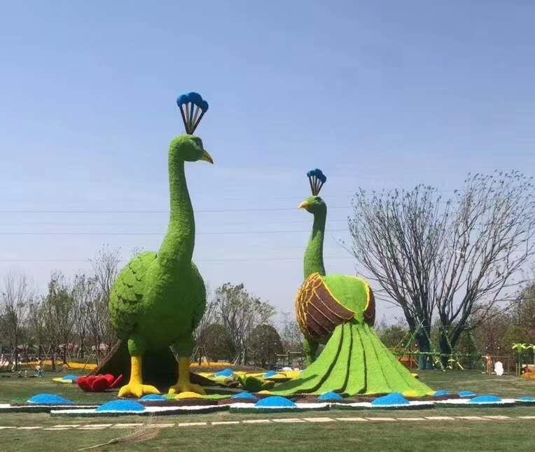 五色草孔雀造型