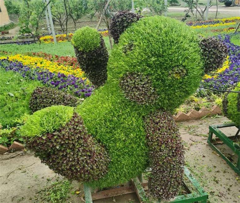 五色草小熊造型